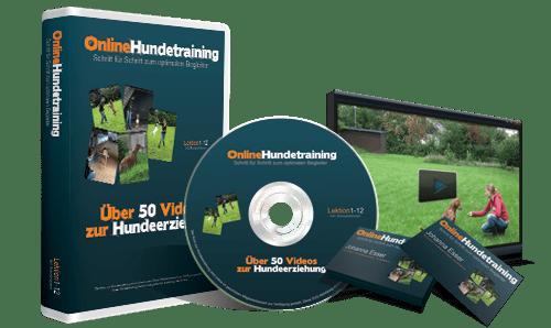 Johanna Esser - Online Hundetraining.