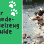 Der Hundespielzeug-Guide.
