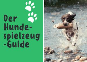 Der Hundespielzeug-Guide